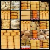 Serowy kolaż zdjęcia stock
