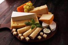 Serowy talerz słuzyć z winogronami, różnorodny ser na półmisku obrazy stock