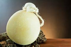 serowy włoski provolone Zdjęcia Royalty Free