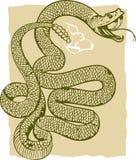 Serpent à sonnettes fâché illustration libre de droits