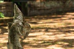 serpent Stock Fotografie