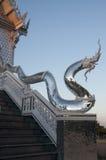 serpent Fotografie Stock