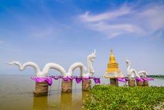 Serpent at big swamp or big lake, name is Gwarnpayao, Payao . Royalty Free Stock Photos
