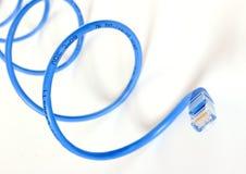 Serpent bleu de réseau Photo libre de droits