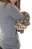 Serpent de boa d'animal familier Photo libre de droits