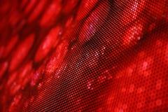 Serpent de rouge de photo d'écran de LED Photographie stock