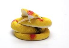 Serpent en caoutchouc sur un fond blanc Image stock