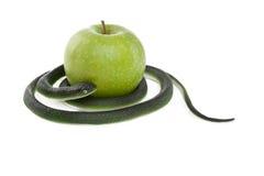 Serpent enroulant autour d'une pomme verte Photo libre de droits