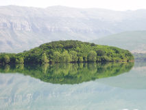 Serpent lake. A large serpent resting on the surface of the lake stock image