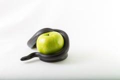 Serpent noir de tentation lovant autour d'une pomme verte Photo stock