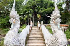 The Serpent statue (naga) on the ladder at the entrance to Thai Stock Photos