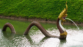 Serpent Royalty Free Stock Photography