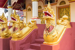 Serpent Thailand Royalty Free Stock Photo