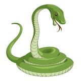 Serpente Immagine Stock