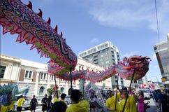 Serpente cinese dell'nuovo anno di Wellington Immagine Stock Libera da Diritti