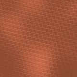 Serpente del Brown della pelle del rettile Fotografia Stock Libera da Diritti