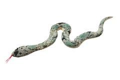 Serpente del giocattolo Fotografie Stock Libere da Diritti