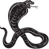 Serpente della cobra Fotografia Stock Libera da Diritti