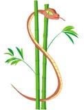 Serpente do dólar americano No bambu Imagens de Stock Royalty Free