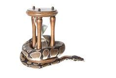 Serpente do pitão com ampulheta imagens de stock