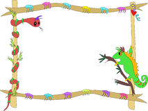 Serpente e Chameleon incorniciati Immagini Stock