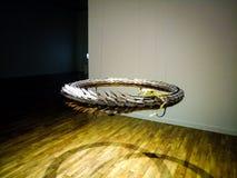 Serpente e sua absorção impressionante imagens de stock royalty free