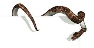 Serpente sul bordo del segno Immagini Stock