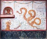 Serpenti della donna e peacockded Immagini Stock