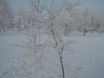 Serpentina de la guirnalda del árbol de navidad del juguete de la Navidad del día de fiesta de Frost fotos de archivo libres de regalías