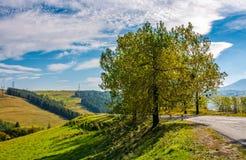 Serpentine μέσω των λόφων επαρχίας με τα δέντρα Στοκ Φωτογραφία