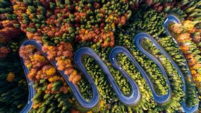 Free Serpentine Details - Aerial View Of Winding Forest Road In The Mountains. Colourful Landscape With Rural Road, Trees With Yellow L Stock Images - 161945924