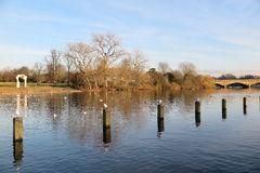 The Serpentine Lake in Hyde Park. London Royalty Free Stock Photography