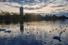 Serpentine lake river in Hyde Park, London, UK Stock Photos