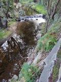 Serpentine River photo libre de droits