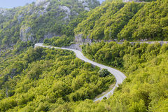 Serpentine road. Dangerous mountain road through the forest Royalty Free Stock Photo