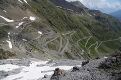 Serpentine road in the italian Alps leads to Stelvio Pass Stock Photography