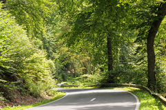Road in Walloon, Belgium Royalty Free Stock Photos