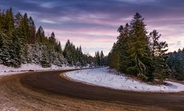 Serpentine in spruce forest at dusk. Beautiful nature scenery in winter Royalty Free Stock Photography