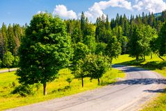 Serpentine turnaround on forested hill. Lovely summer scenery in mountains. travel concept Stock Photos