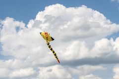 Serpents de vol dans le ciel nuageux Photos stock