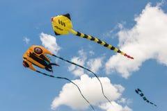 Serpents de vol dans le ciel nuageux Images libres de droits