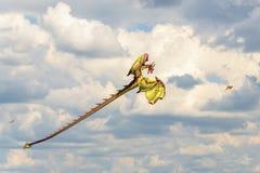 Serpents de vol dans le ciel nuageux Images stock