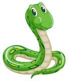 Serpiente ilustración del vector