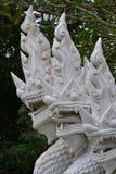 Serpiente blanca Imagen de archivo