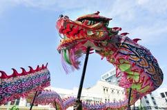 Serpiente china del Año Nuevo de Wellington Fotografía de archivo
