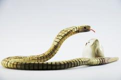 Serpiente de la cobra real con el búho Foto de archivo