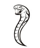 Serpiente de la víbora Fotografía de archivo libre de regalías