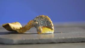 Serpiente del ` s del faraón Reacción química con el fuego Reacción hermosa y aterrorizante Mercurio del tiocianato almacen de video