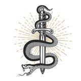Serpiente en el cuchillo en estilo del tatuaje Diseñe el elemento para la camiseta, cartel, tarjeta, emblema, muestra Foto de archivo libre de regalías