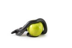 Serpiente negra y manzana verde Fotos de archivo libres de regalías